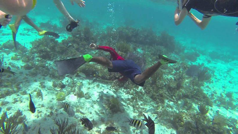 snorkel slader