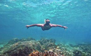 snorkeling and catamaran punta cana